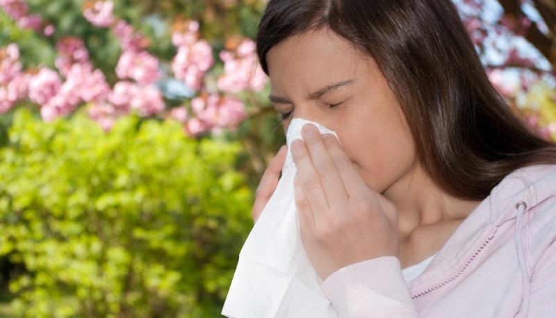 Allergiker sollten, wenn die Pollen aktuell besonders intensiv sind, folgende Tipps beherzigen (#01)
