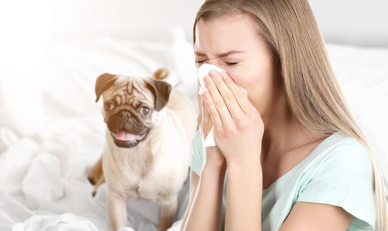 Die genannten Maßnahmen zur Vorbeugung sind so wirksam, dass sie bei konsequentem Anwenden erreichen können, dass der betreffende Allergiker keine Medikamente braucht. (#03)